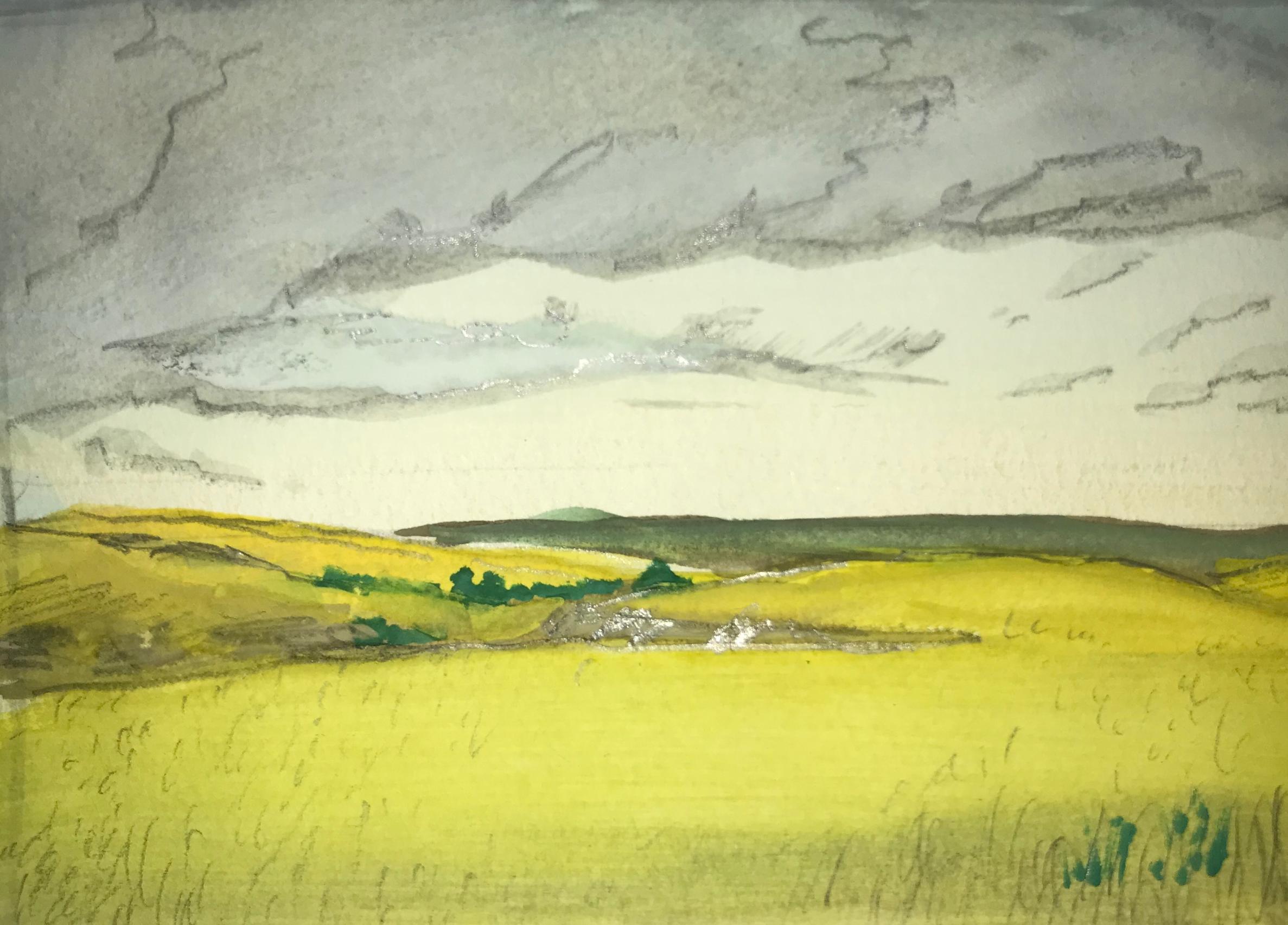 Konza Prairie 1